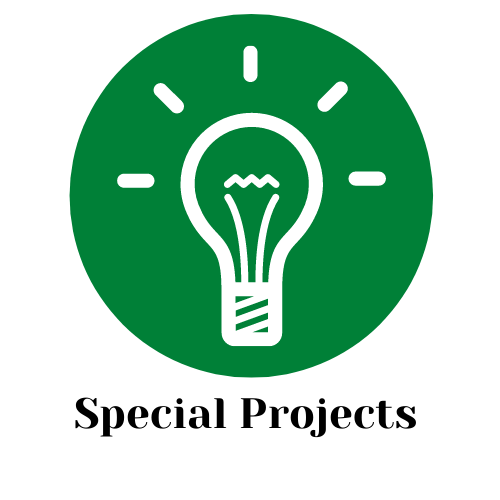 Icon - Special Projects (2)